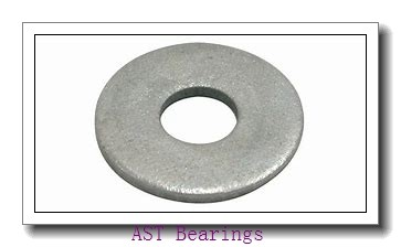 AST AST090 125100 plain bearings