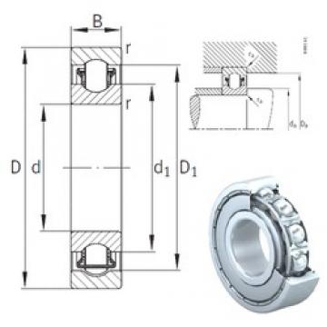 INA BXRE000-2Z needle roller bearings